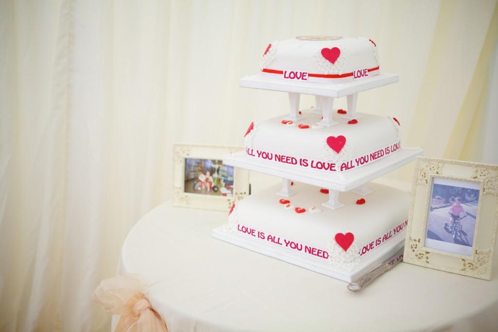 fran_joe_wedding_lores264